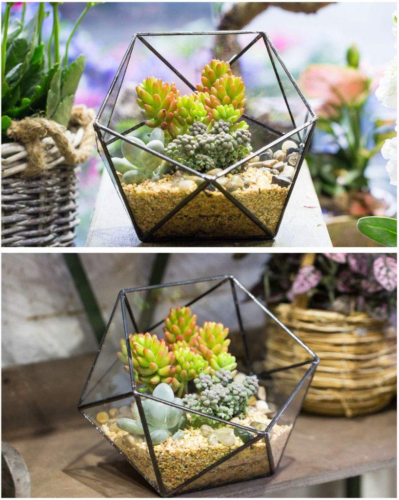 Screenshot_2019-01-07-Modern-Handmade-Triangular-Half-Ball-Glass-Geometric-Terrarium-Balcony-Bowl-Shape-Flower-Pot-Window-S...1-1-818x1024 Handmade Glass Geometric Terrarium for Succulents