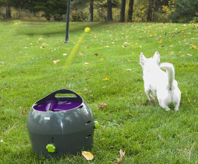 Automatic Tennis Ball Throwing Machine for Dog