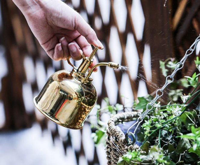 Watering Brass Can Mister for Flowers and Succulents (300ml)