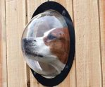 Bubble Window for Cats and Dogs Prevent From Jumping