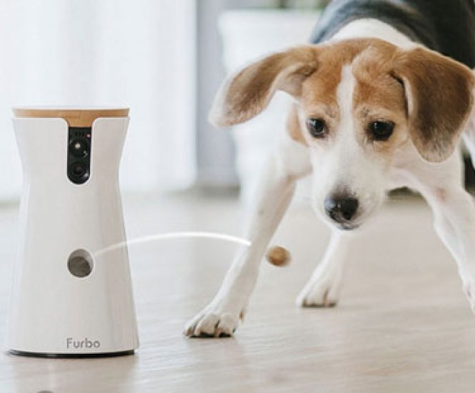 Full HD Wifi Dog Camera with 2-Way-Audio, Treat Tossing