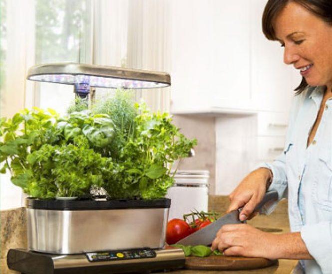 Miracle-Gro Harvest Elite with Gourmet Herb Seed Pod Kit