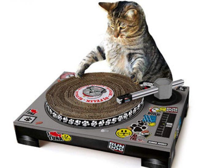 Cat Cardboard Turntable & DJ Mixer